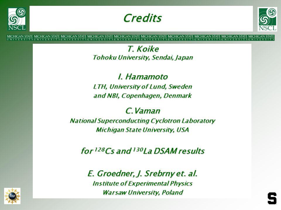 Credits T. Koike I. Hamamoto C.Vaman for 128Cs and 130La DSAM results