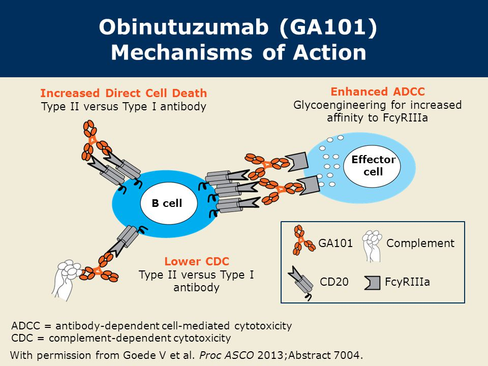 Obinutuzumab (GA101) Mechanisms of Action
