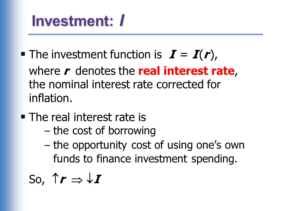 The investment function
