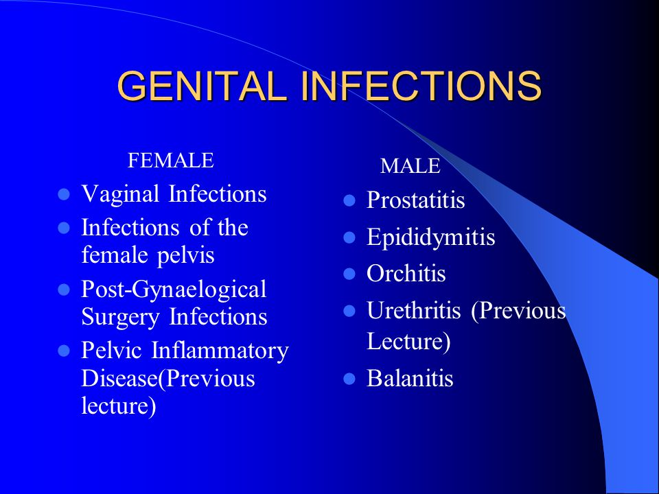 GENITAL INFECTIONS Vaginal Infections Prostatitis