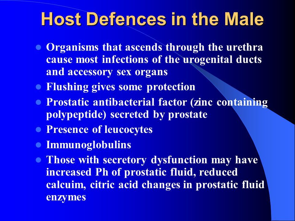 Host Defences in the Male