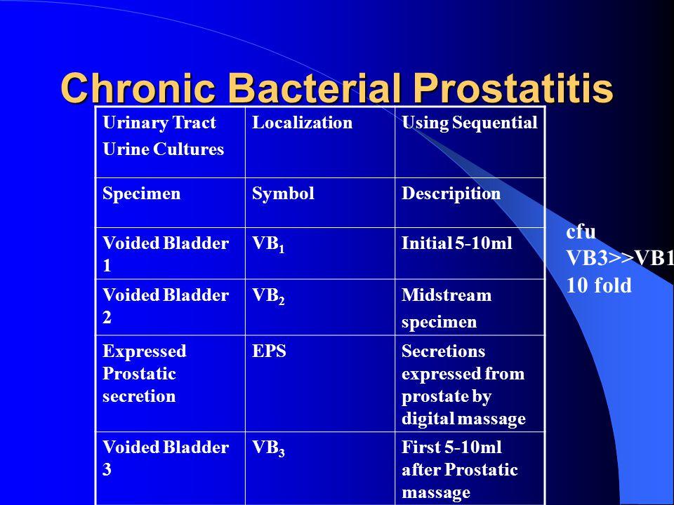 Chronic Bacterial Prostatitis