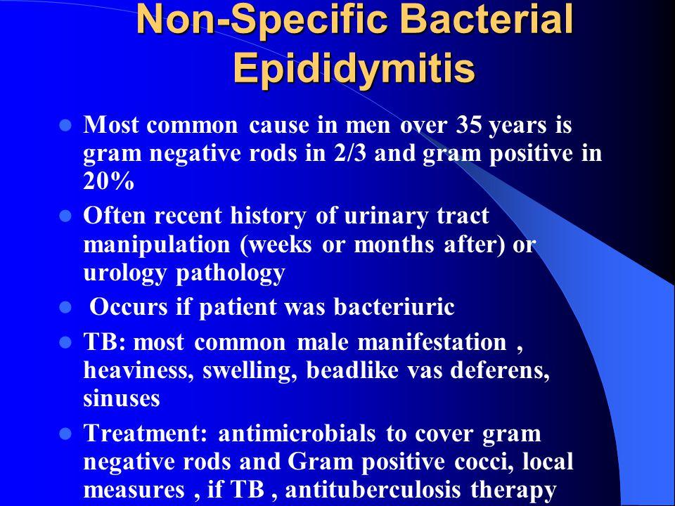 Non-Specific Bacterial Epididymitis