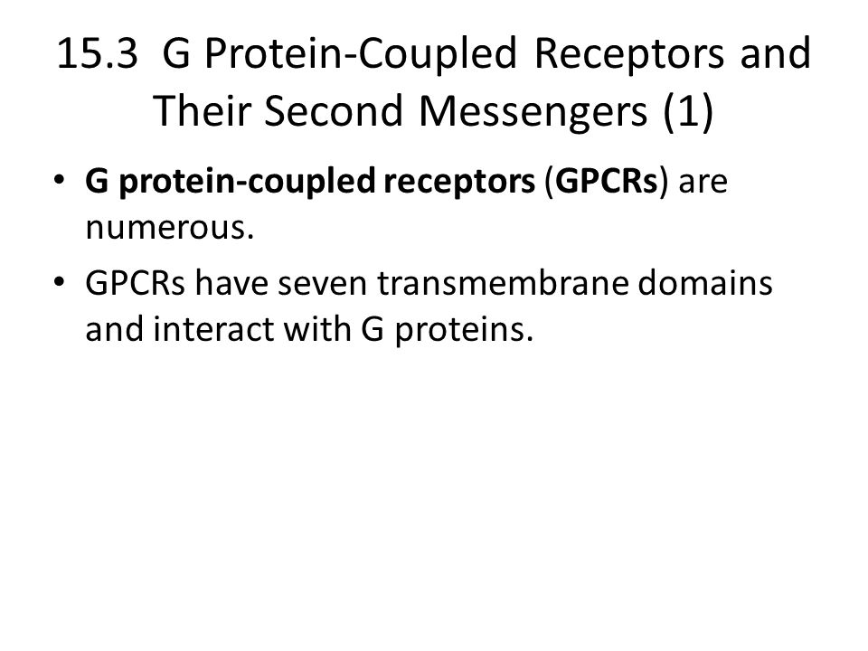 15.3 G Protein-Coupled Receptors and Their Second Messengers (1)