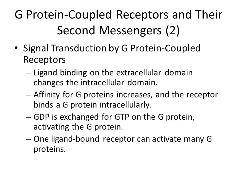 G Protein-Coupled Receptors and Their Second Messengers (2)