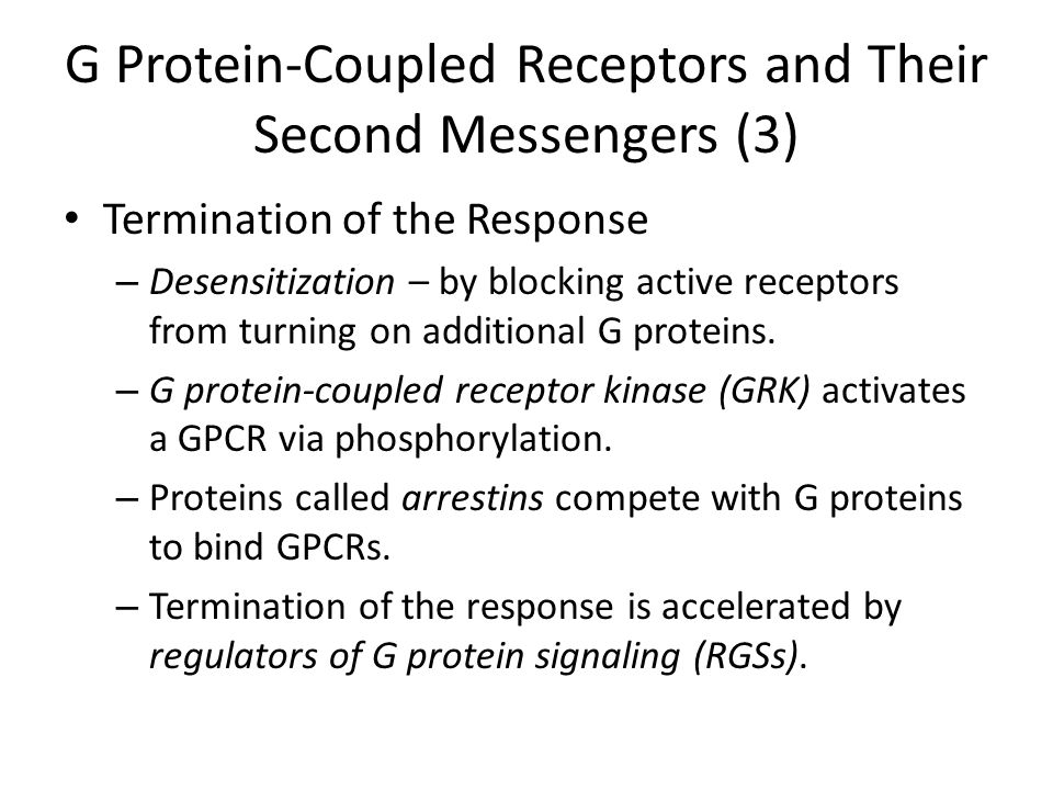 G Protein-Coupled Receptors and Their Second Messengers (3)