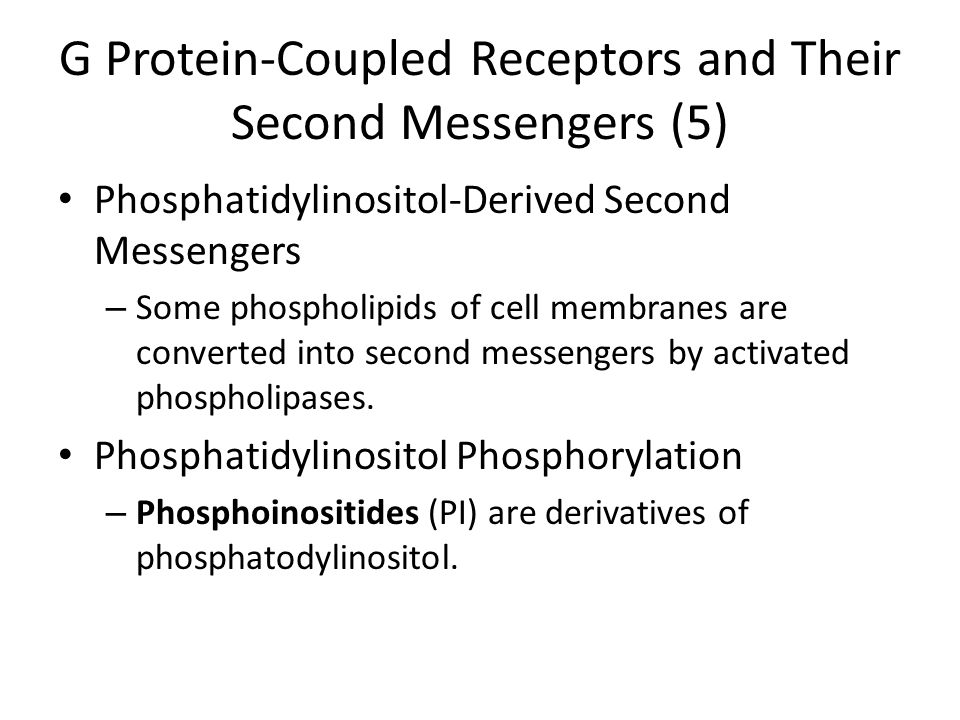 G Protein-Coupled Receptors and Their Second Messengers (5)