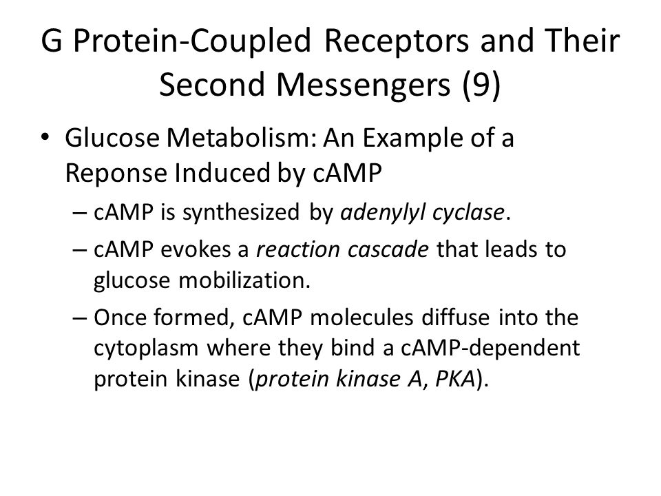 G Protein-Coupled Receptors and Their Second Messengers (9)