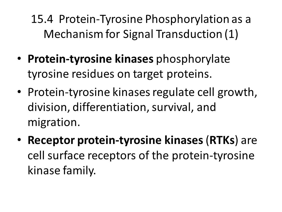 15.4 Protein-Tyrosine Phosphorylation as a Mechanism for Signal Transduction (1)