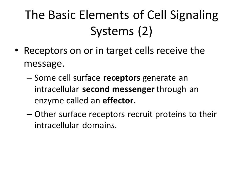 The Basic Elements of Cell Signaling Systems (2)