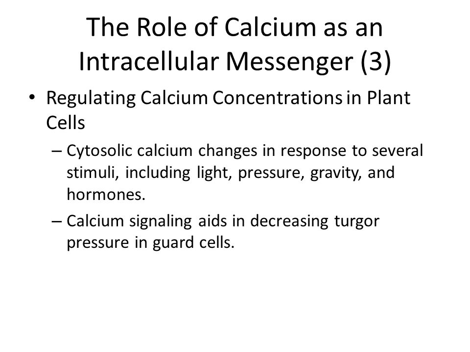 The Role of Calcium as an Intracellular Messenger (3)
