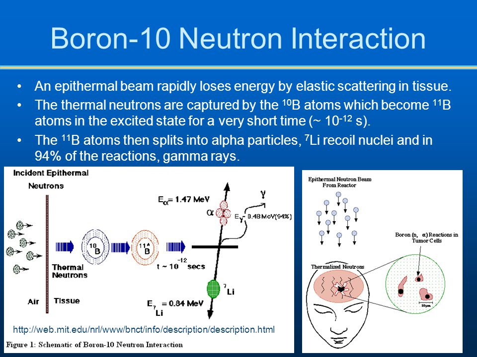 Boron-10 Neutron Interaction
