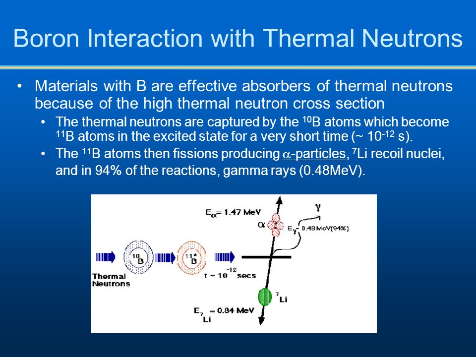 Boron Interaction with Thermal Neutrons