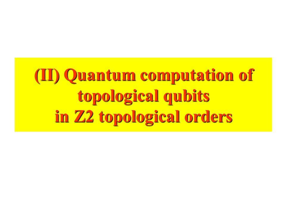 (II) Quantum computation of topological qubits in Z2 topological orders