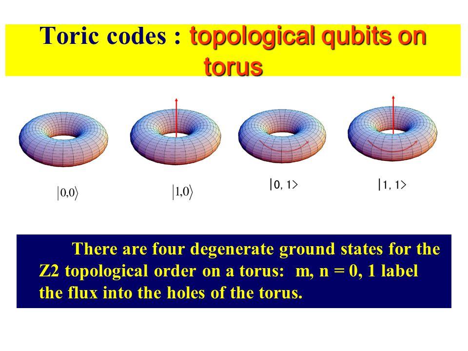 Toric codes : topological qubits on torus