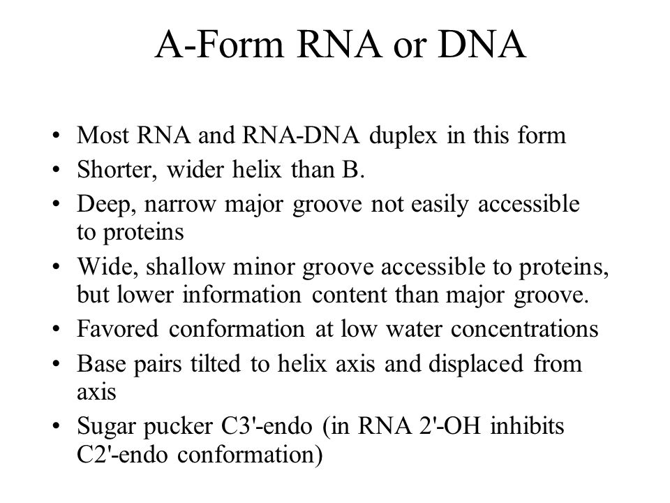A-Form RNA or DNA Most RNA and RNA-DNA duplex in this form