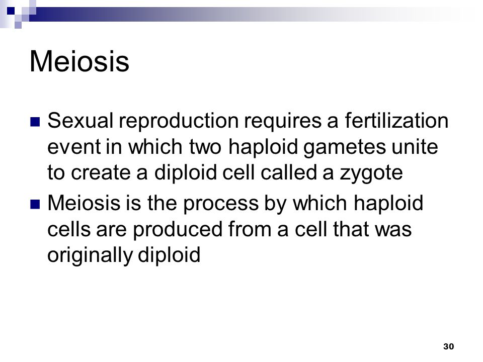 Meiosis Sexual reproduction requires a fertilization event in which two haploid gametes unite to create a diploid cell called a zygote.