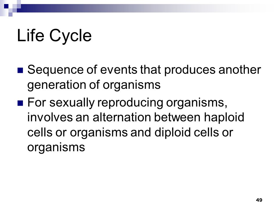 Life Cycle Sequence of events that produces another generation of organisms.