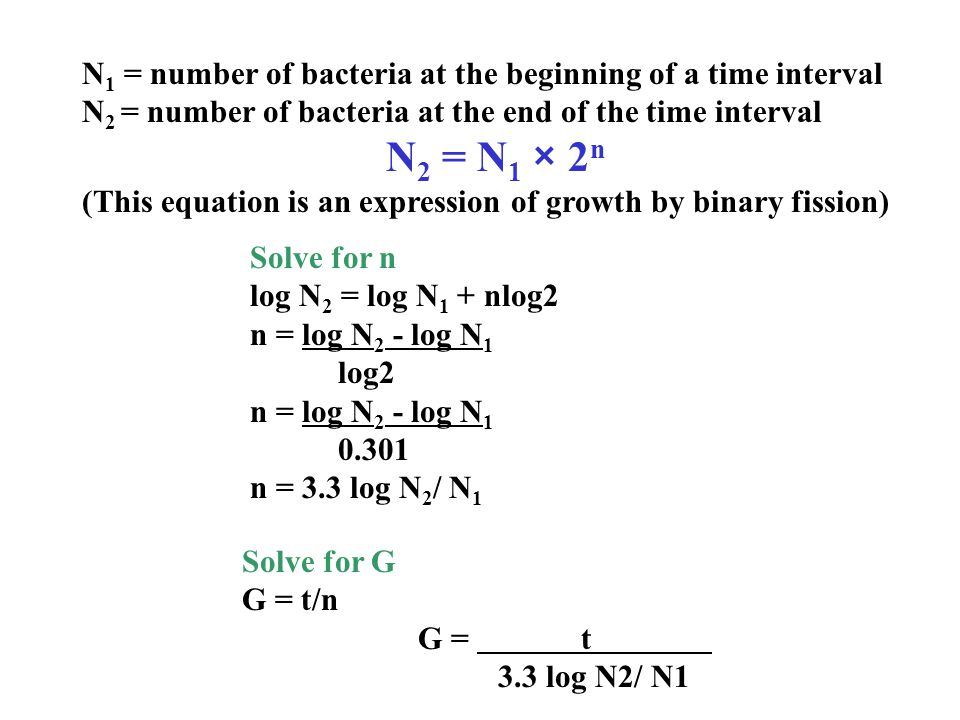 N1 = number of bacteria at the beginning of a time interval