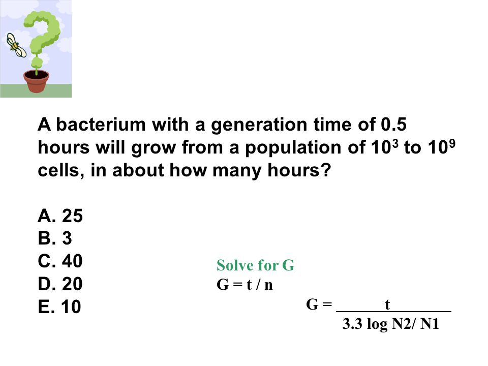 A bacterium with a generation time of 0