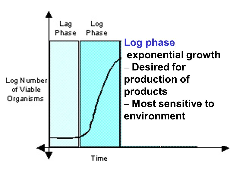 Log phase exponential growth – Desired for production of products – Most sensitive to environment