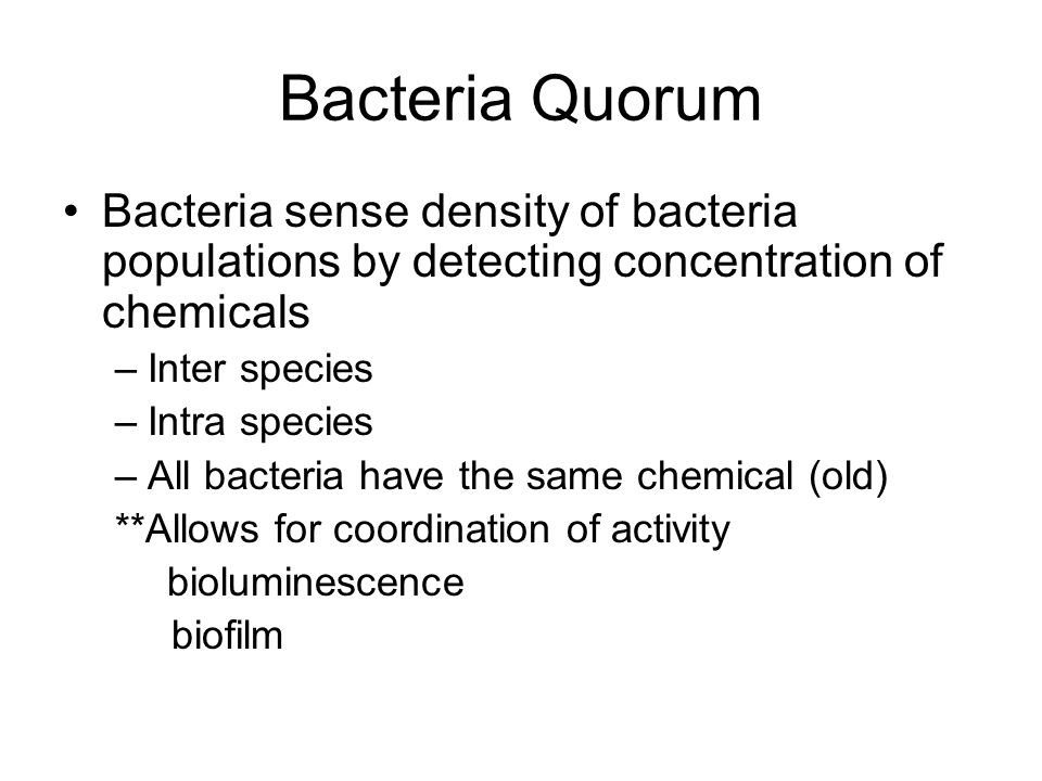 Bacteria Quorum Bacteria sense density of bacteria populations by detecting concentration of chemicals.