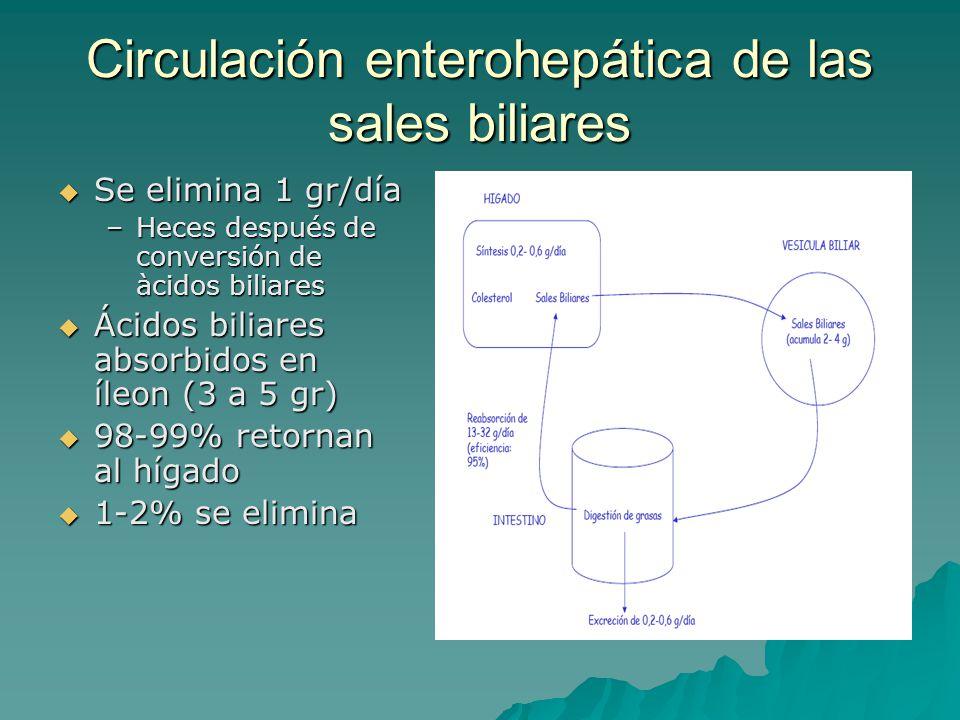 Circulación enterohepática de las sales biliares