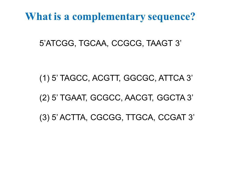 What is a complementary sequence