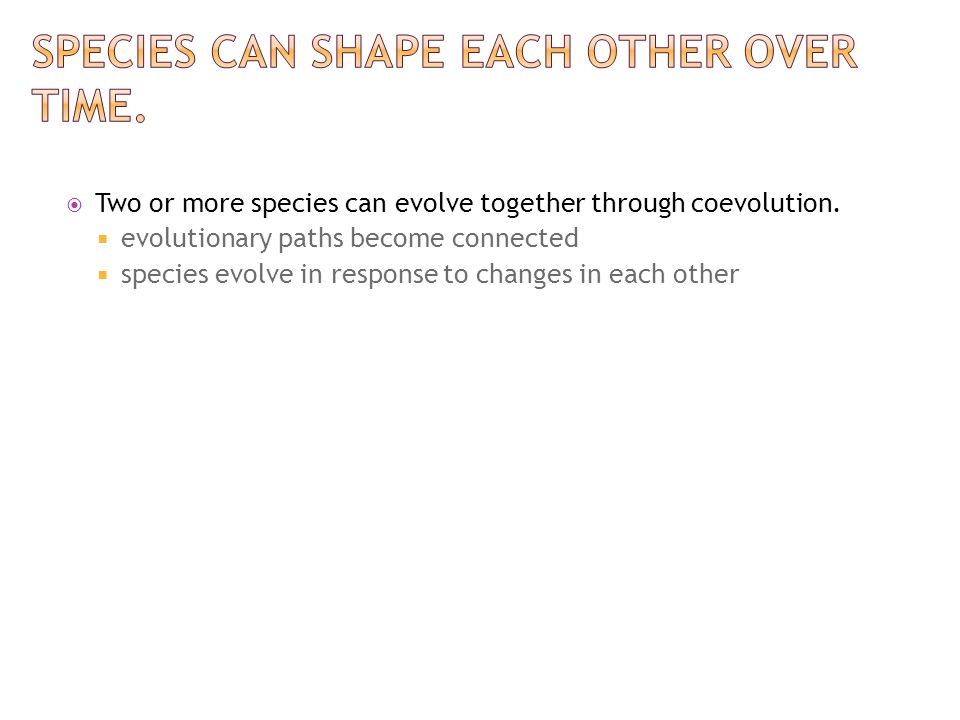 Species can shape each other over time.