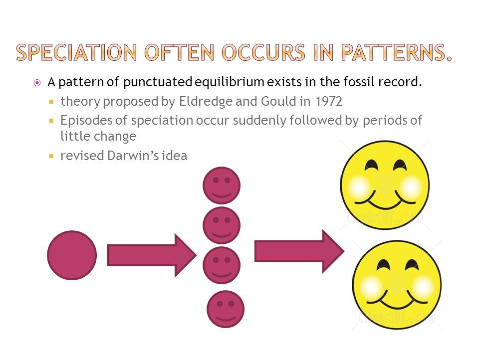 Speciation often occurs in patterns.