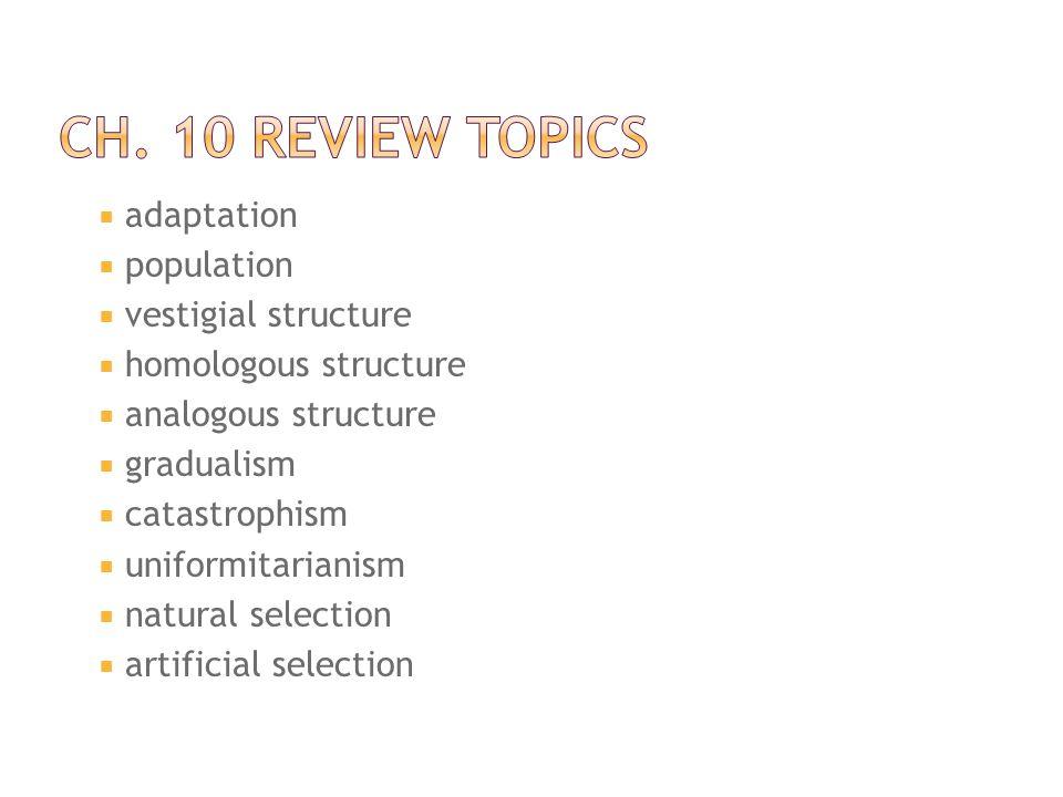 Ch. 10 Review Topics adaptation population vestigial structure