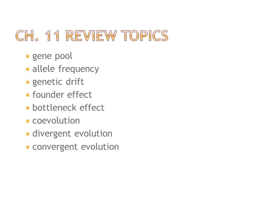 Ch. 11 Review Topics gene pool allele frequency genetic drift
