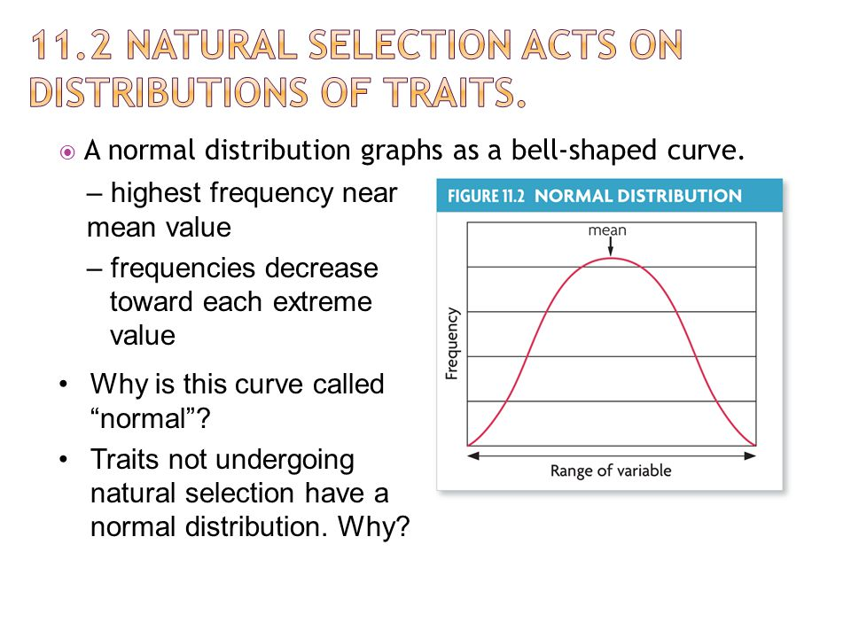 11.2 Natural selection acts on distributions of traits.