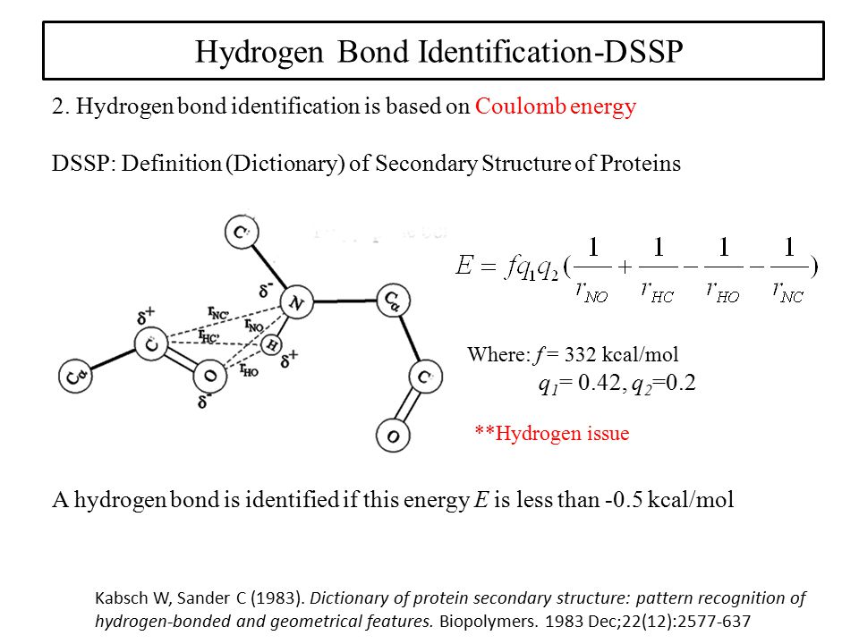 Hydrogen Bond Identification-DSSP