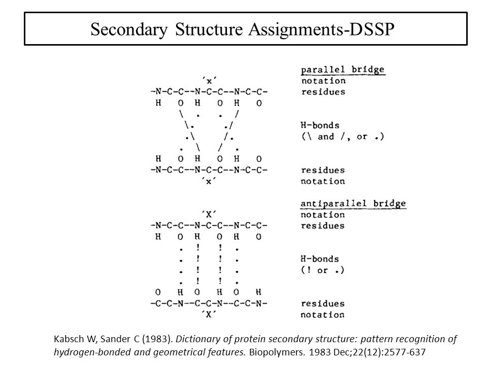 Secondary Structure Assignments-DSSP