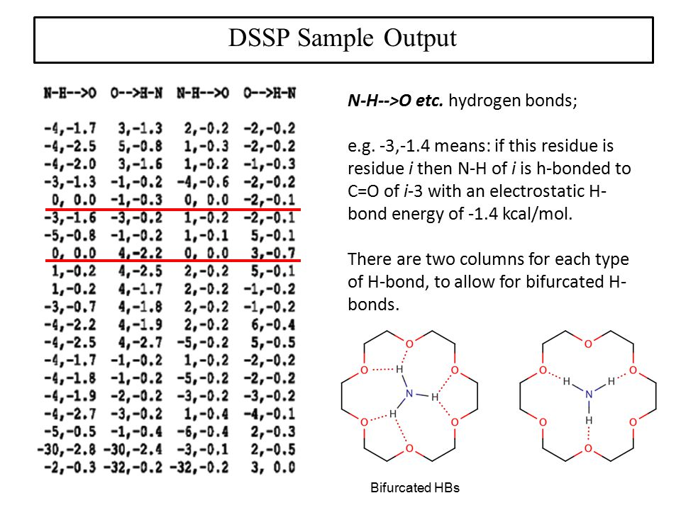 DSSP Sample Output N-H-->O etc. hydrogen bonds;