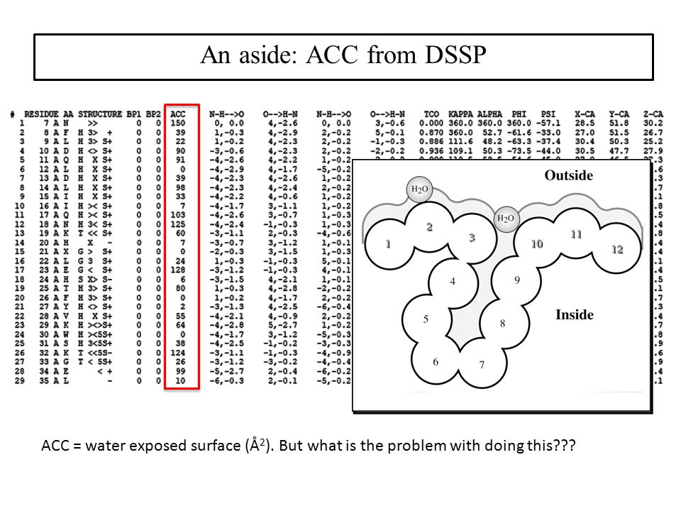 An aside: ACC from DSSP ACC = water exposed surface (Å2).
