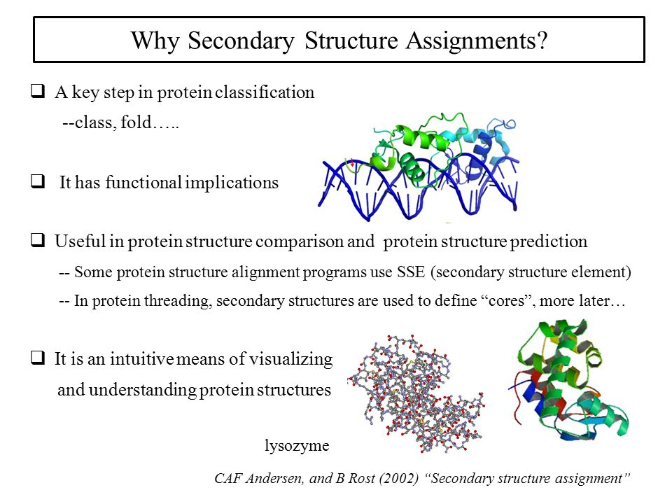 Why Secondary Structure Assignments