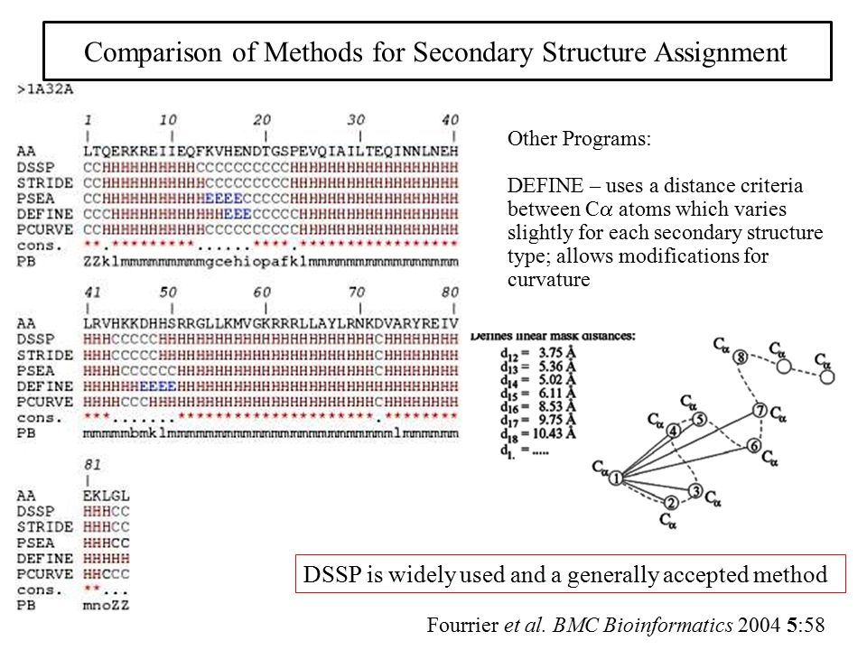 Comparison of Methods for Secondary Structure Assignment