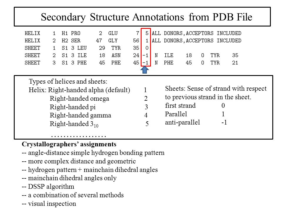 Secondary Structure Annotations from PDB File
