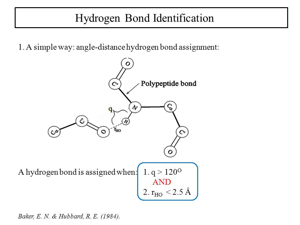 Hydrogen Bond Identification