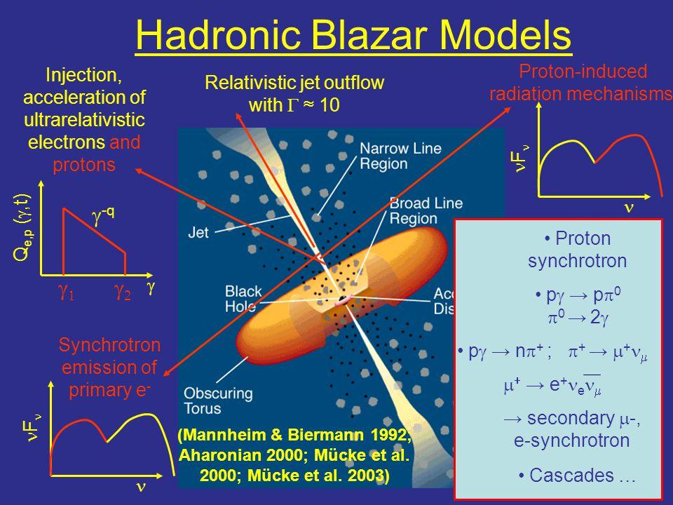 Hadronic Blazar Models