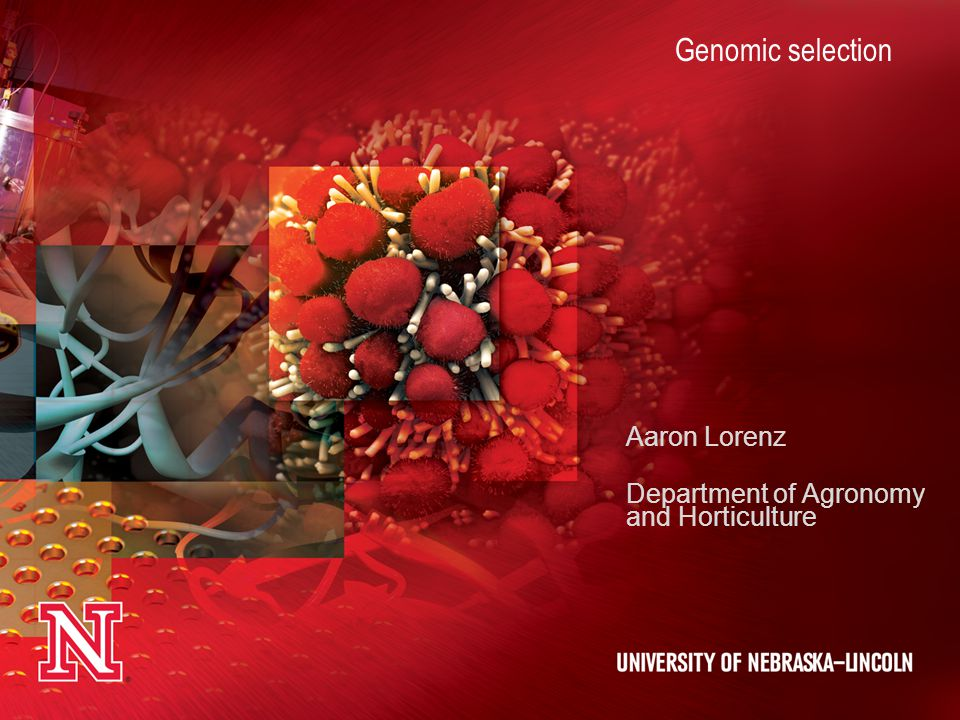 Aaron Lorenz Department of Agronomy and Horticulture