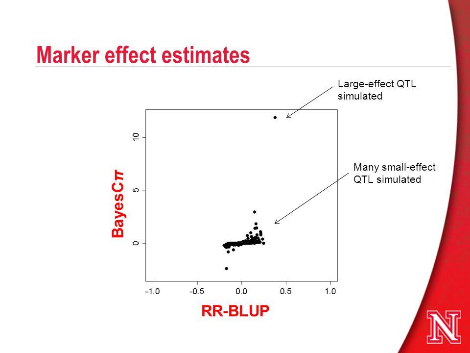 Marker effect estimates