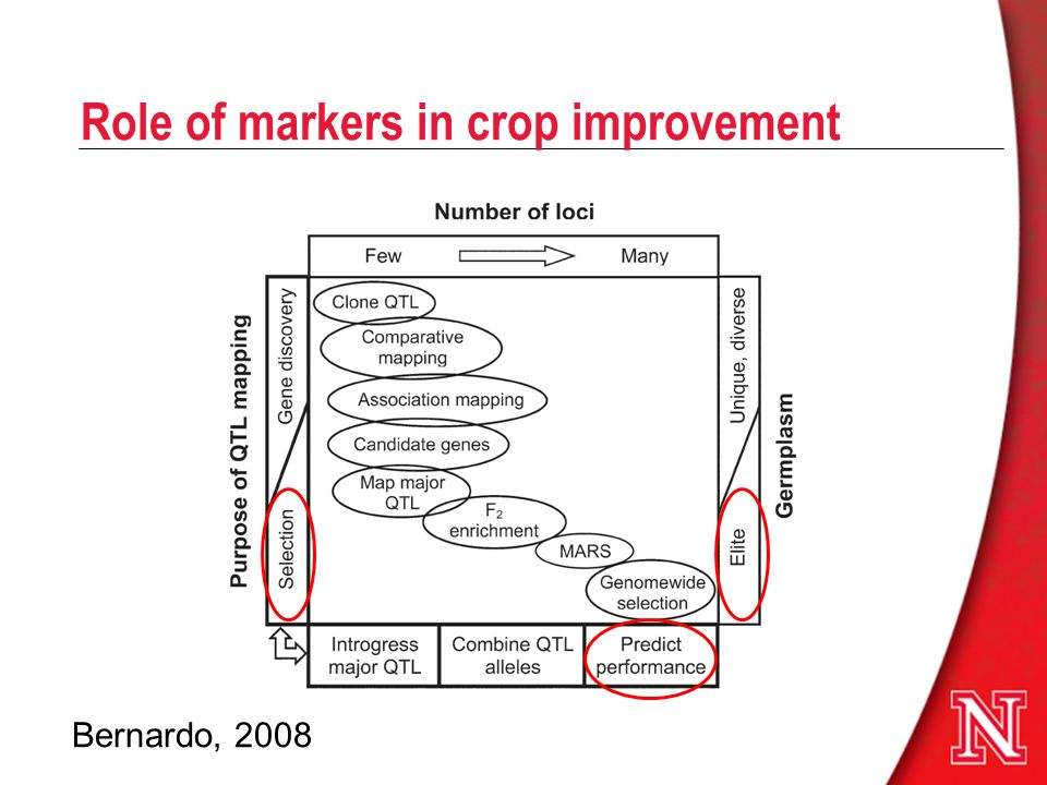 Role of markers in crop improvement