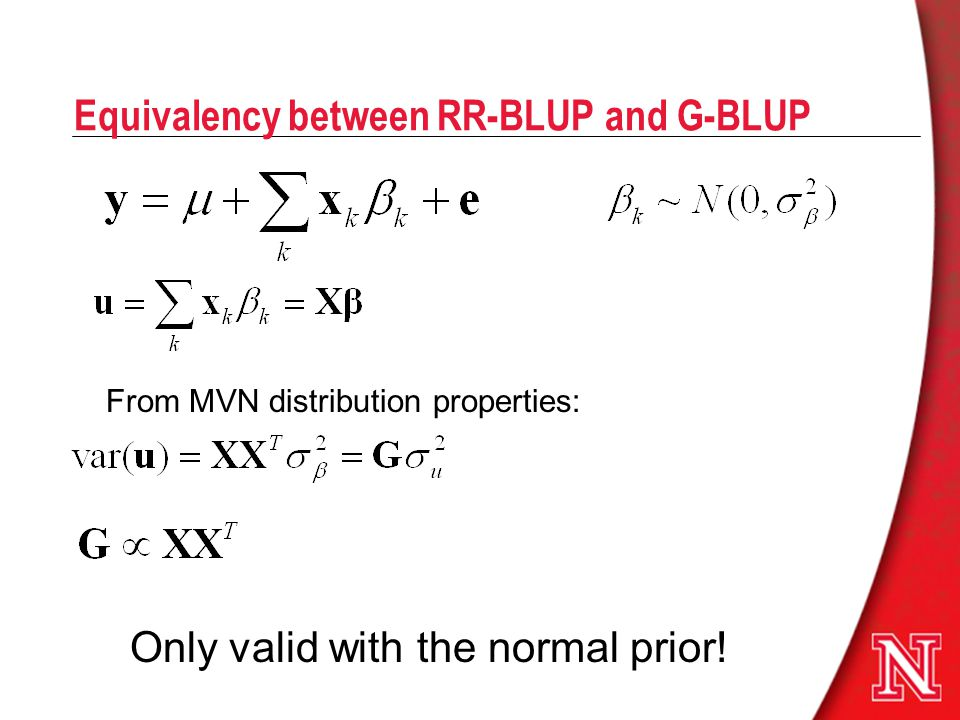 Equivalency between RR-BLUP and G-BLUP