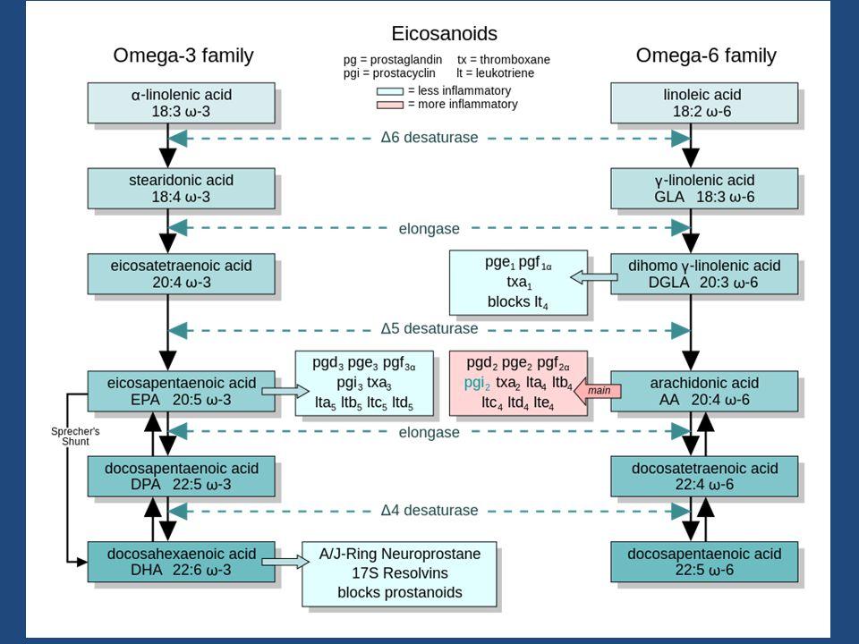 Linoleic acid 2. 5% breakdown compared to 18% for alpha linoliec acid
