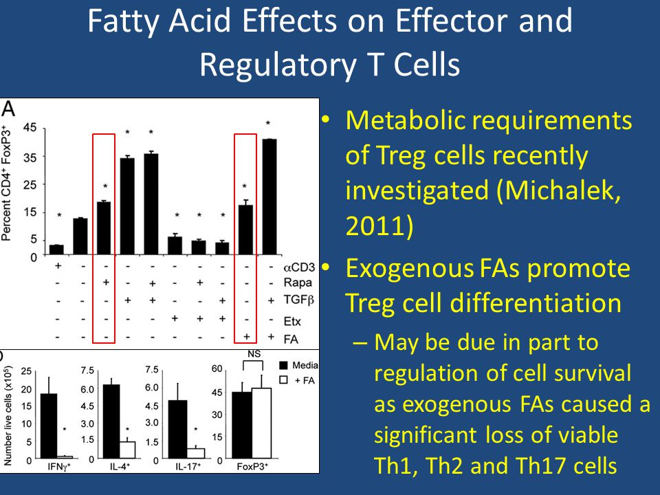 Fatty Acid Effects on Effector and Regulatory T Cells
