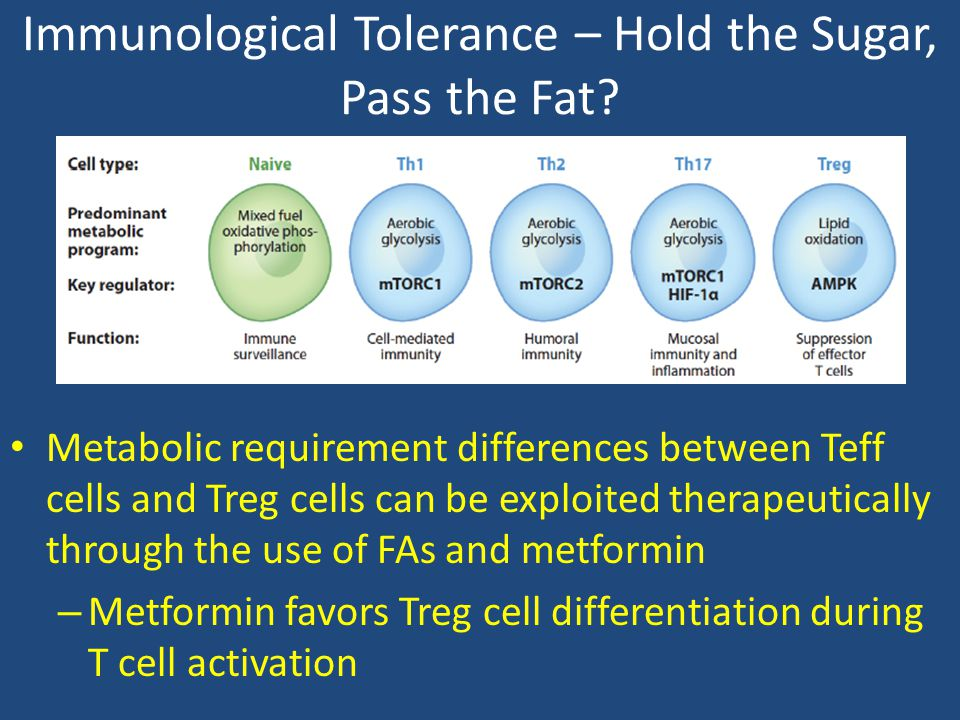 Immunological Tolerance – Hold the Sugar, Pass the Fat