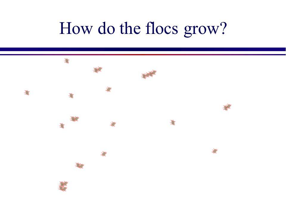 How do the flocs grow
